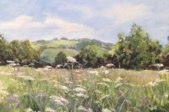 Hay Meadow in mid summer by Stone Artist- Barbara Bell - Facebook - Barbara Bell Oil Paintings
