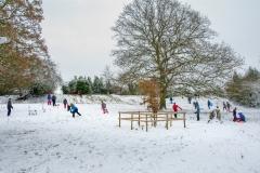Winter Sports on the Plot