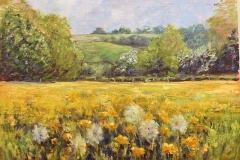Hay Meadow in early summer  - by Stone Artist- Barbara Bell - Facebook - Barbara Bell Oil Paintings