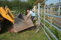 Building the Cattle Handling Facility