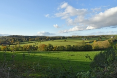 View from The Lower Woodland Path towards Tittensor Chase